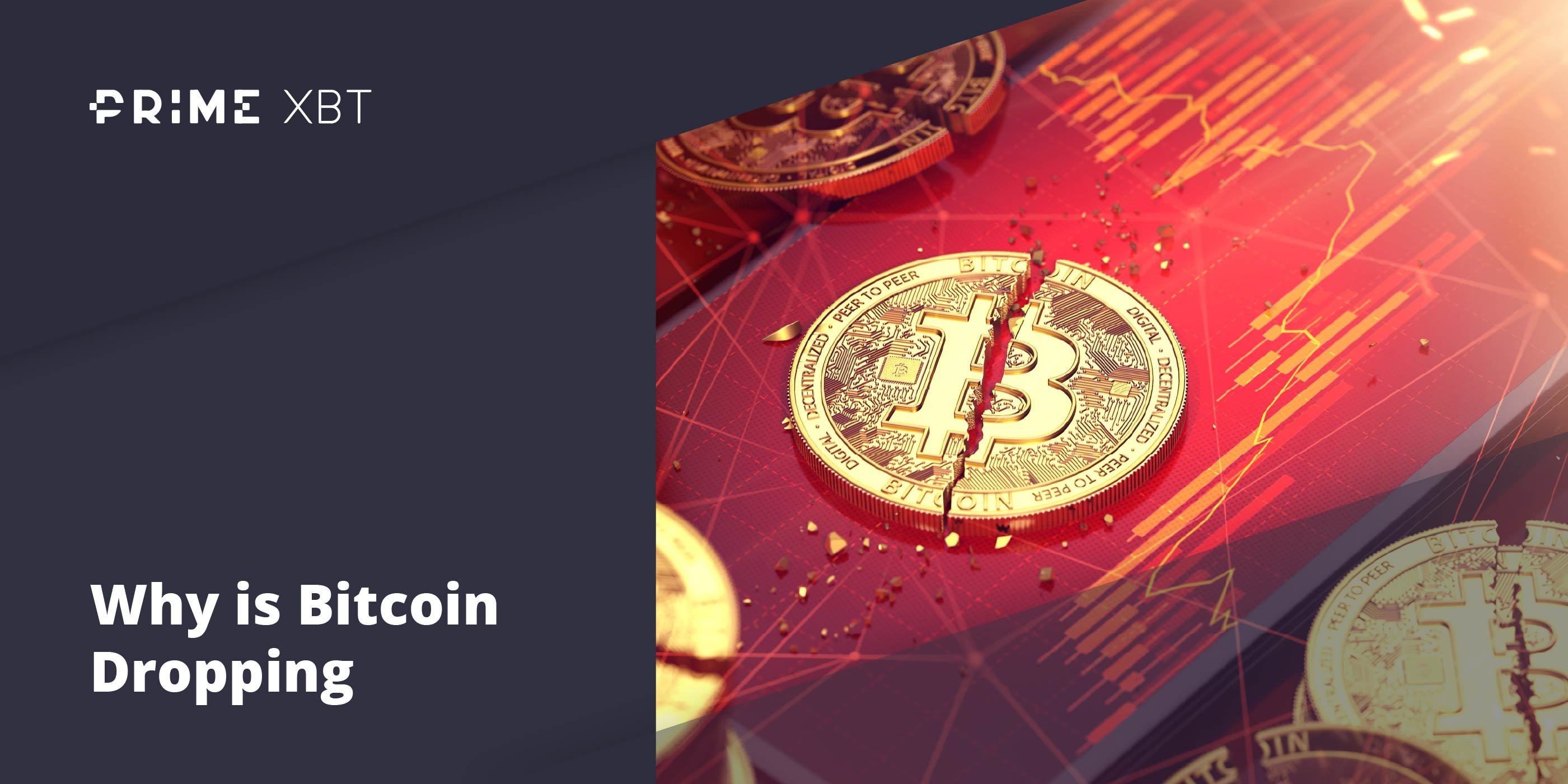 What To Do and What Not To Do When Bitcoin Is Dropping and Why - primexbt btc dropping