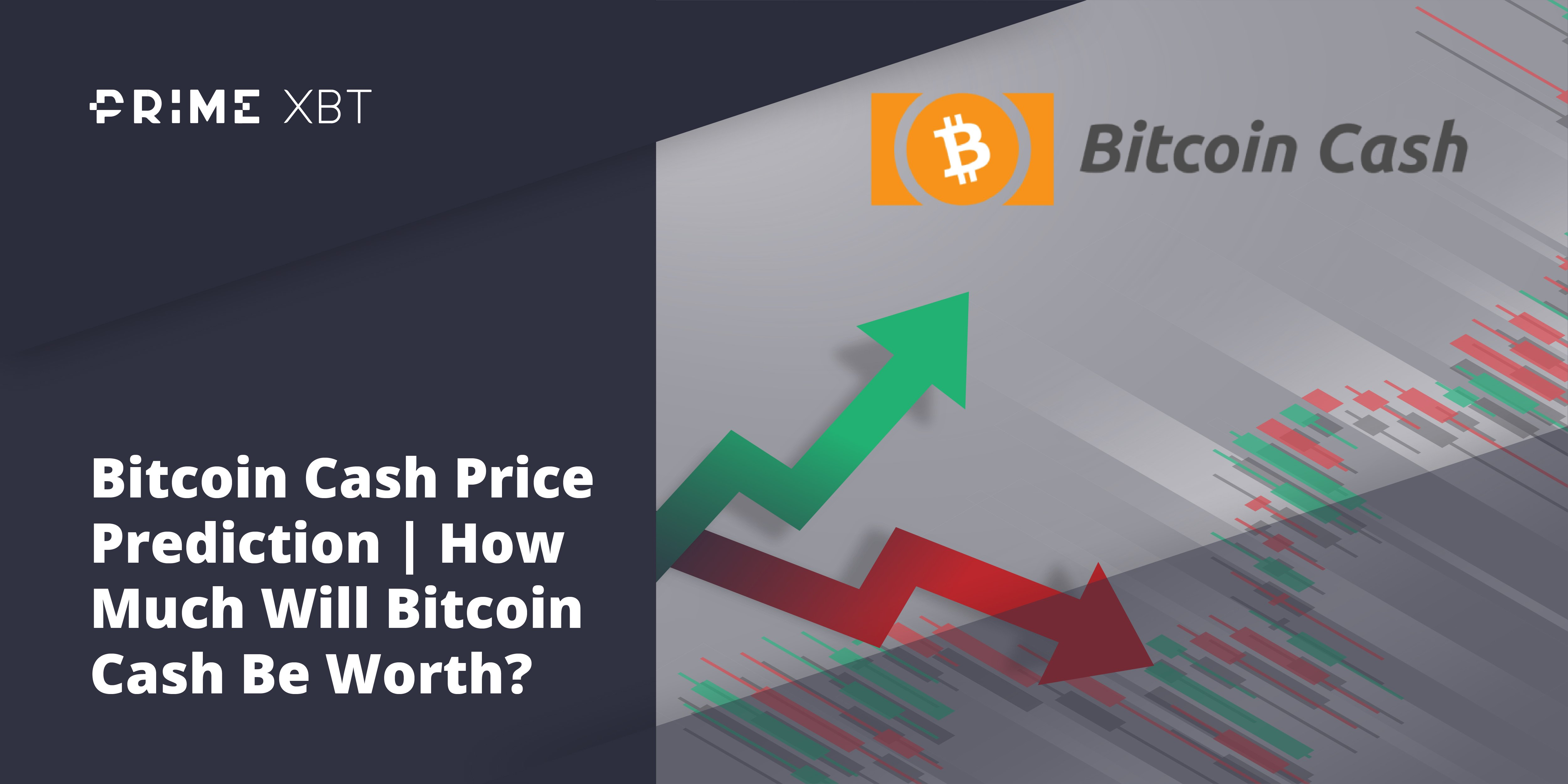 Predicting the Price of Bitcoin Cash for 2021, 2023, and 2025 - bitcoin cash