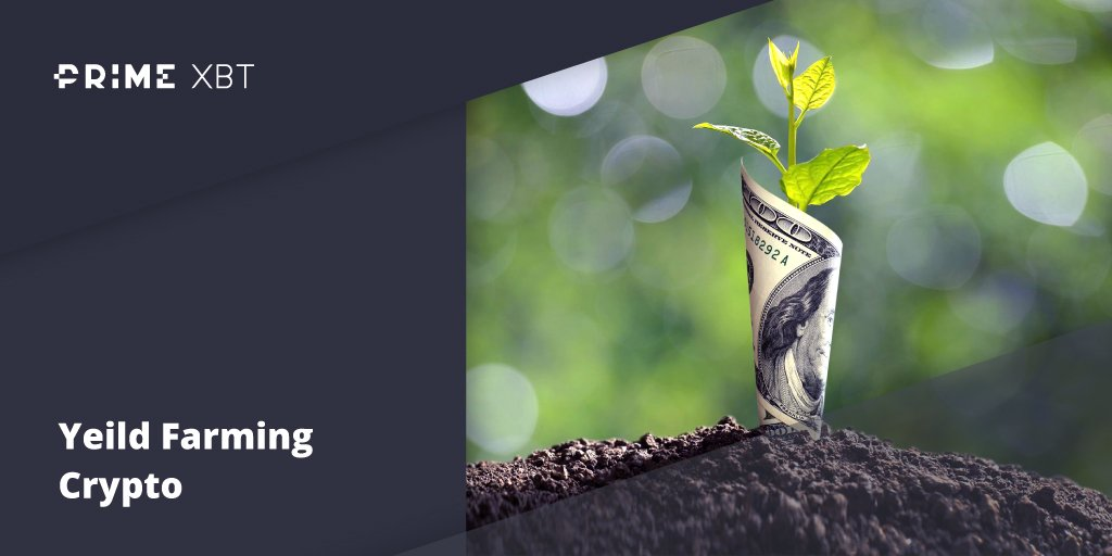 Yield Farming Crypto: Everything You Need To Know About The DeFi Trend - blog primexbt