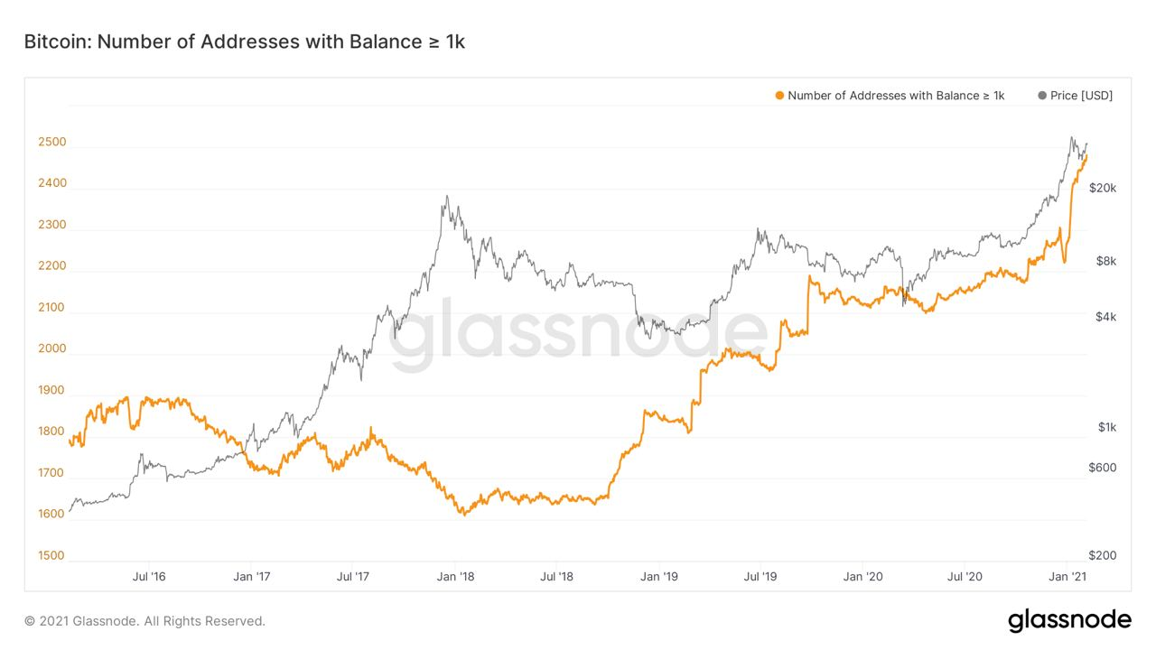 Market Research Report: Bitcoin and Ethereum Hit An All Time High, Altcoins Explode - BTC 1k addresses