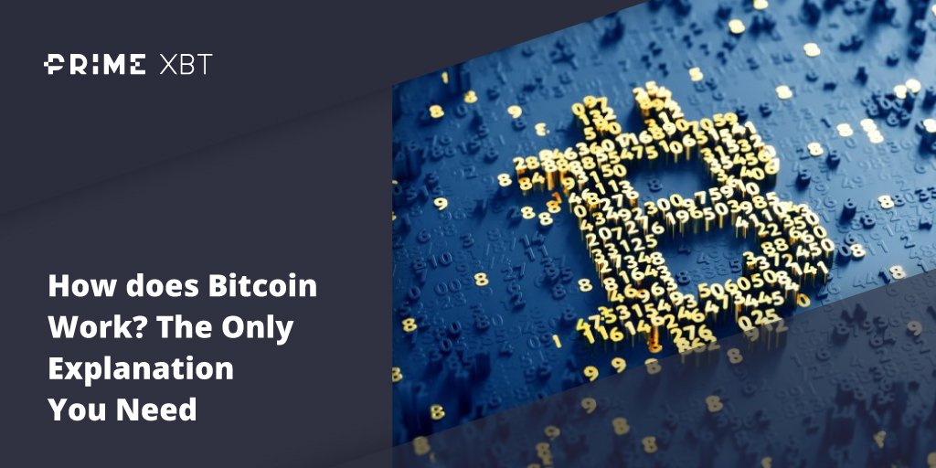 How does Bitcoin Work? The Only Explanation You Need - Blog Primexbt 1 03