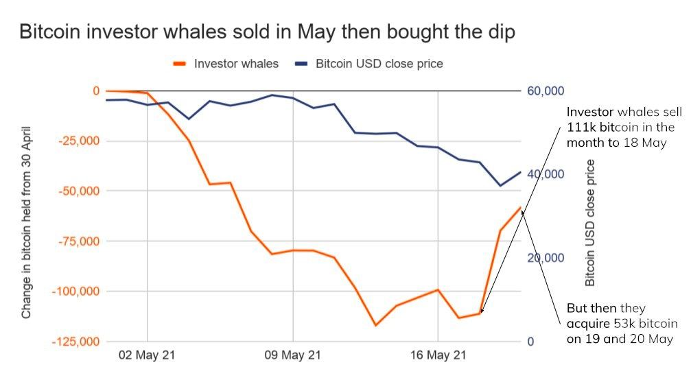 Market Research Report : Crypto Crashes Down as China Calls Ban While Stocks Have Rollercoaster Week - BTC whale May movement