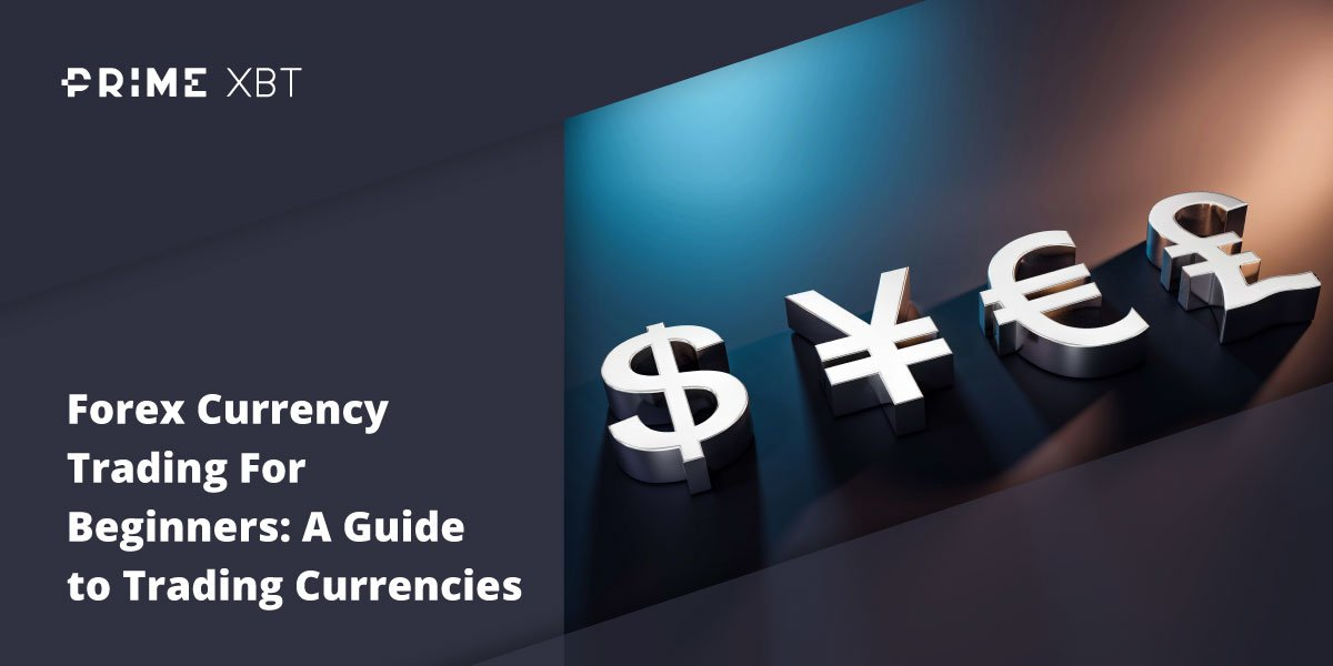Currency Trading For Beginners: A Guide to Trading Currencies - forex primexbt