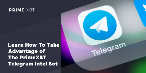 2019 12 11 19.43.30 e1591860749995 - Learn How To Take Advantage of The PrimeXBT Telegram Intel Bot