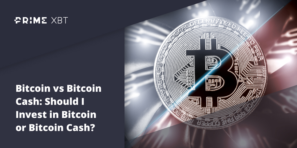 Bitcoin Versus Bitcoin Cash: Which Of The Hard Forks Is Worth Investing In? - Blog Primexbt 16 11