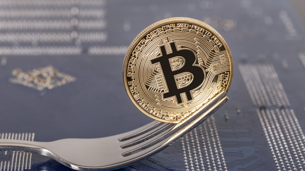 Bitcoin Versus Bitcoin Cash: Which Of The Hard Forks Is Worth Investing In? - image3 1 1024x576